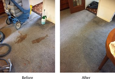 Carpet clean in Medway