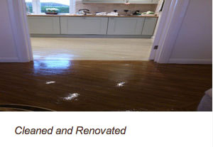 hard floor renovating
