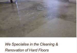 hard floor rejuvinated